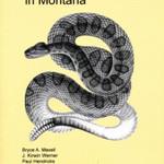 Northwest Fauna 5: Herpetology in Montana