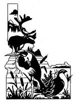 IDTWS-logo